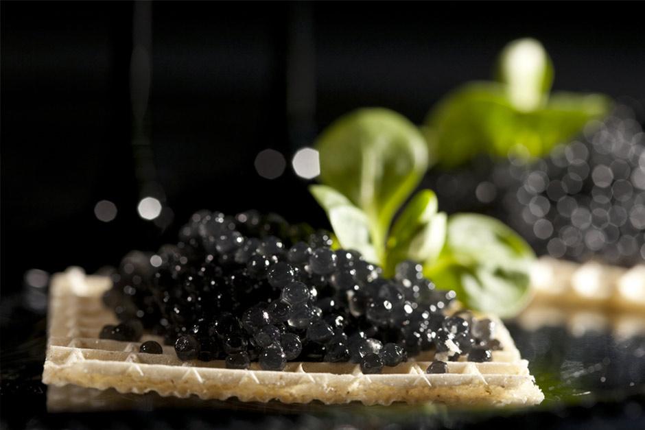 les 7 meilleurs caviar du plus cher au moins cher fish fiches. Black Bedroom Furniture Sets. Home Design Ideas