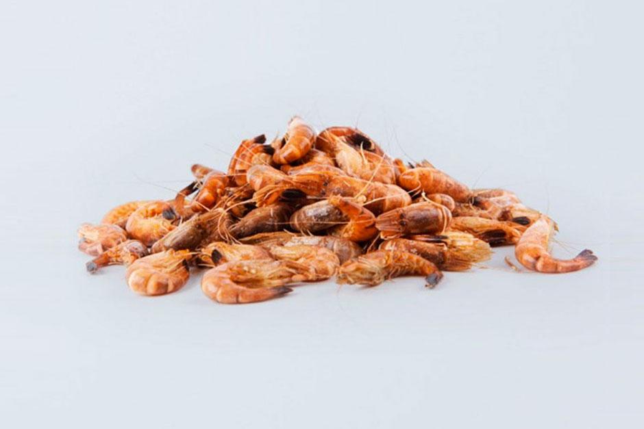 illustration des 10 meilleures recettes de crevettes grises