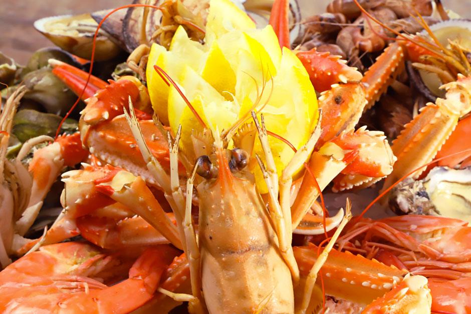 illustration article sur les Farandoles de recettes de fruits de mer