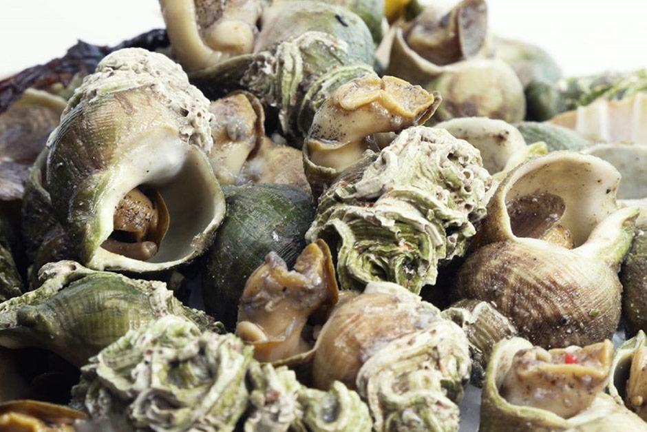 photo du plateau de fruits de mer l'ecailler