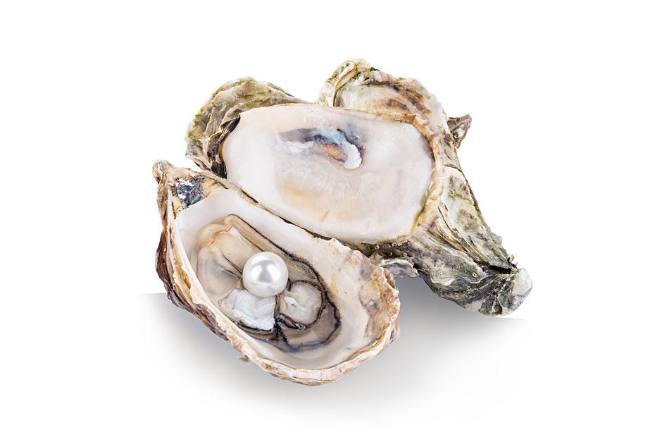 Une perle dans une huître ?