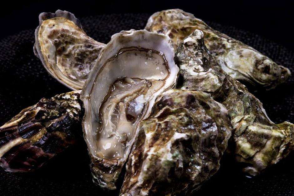 image d'illustration de l'article Fruits de mer Paris 6. En livraison, à emporter ou restaurant, le comparatif